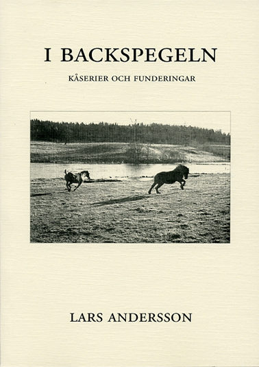 I backspegeln