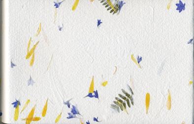 Blomster-Lisas bok